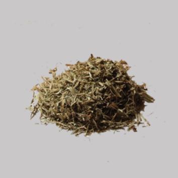 Maconha brava (Zornia latifolia)