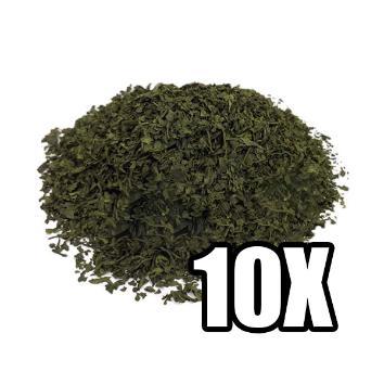 Salvia Divinorum 10X Extract