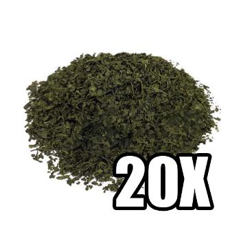 Salvia Divinorum 20X Extract