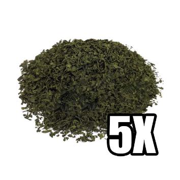 Salvia Divinorum 5X Extract