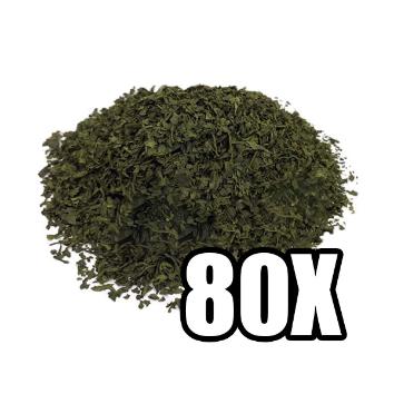 Salvia Divinorum 80X Extract