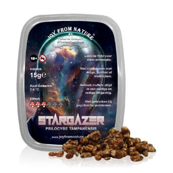 Stargazer (Tampanensis) - Magic Truffles
